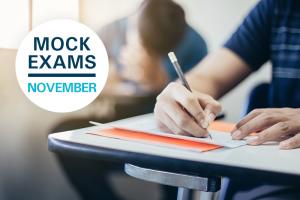 POSPOSATS ELS SIMULACRES d'examen de novembre